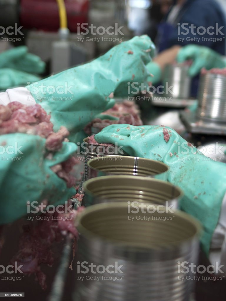 Meat Canning Assembly Line royalty-free stock photo