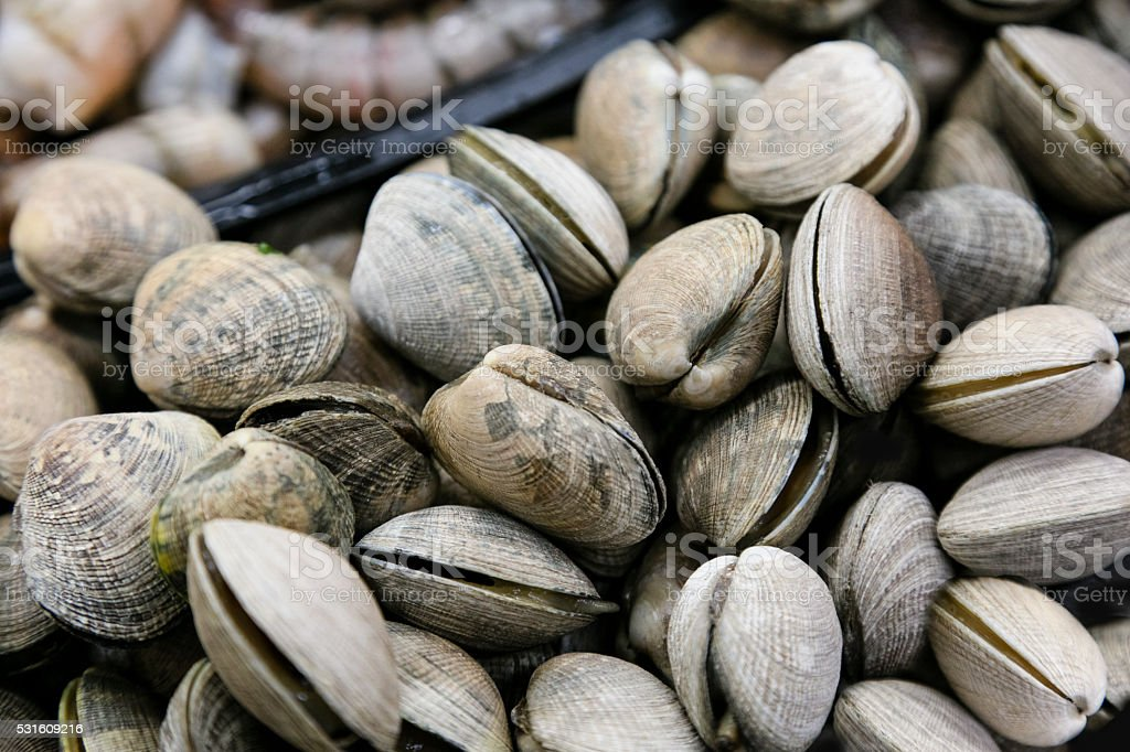 Meat Department of Grocery Store - clams stock photo