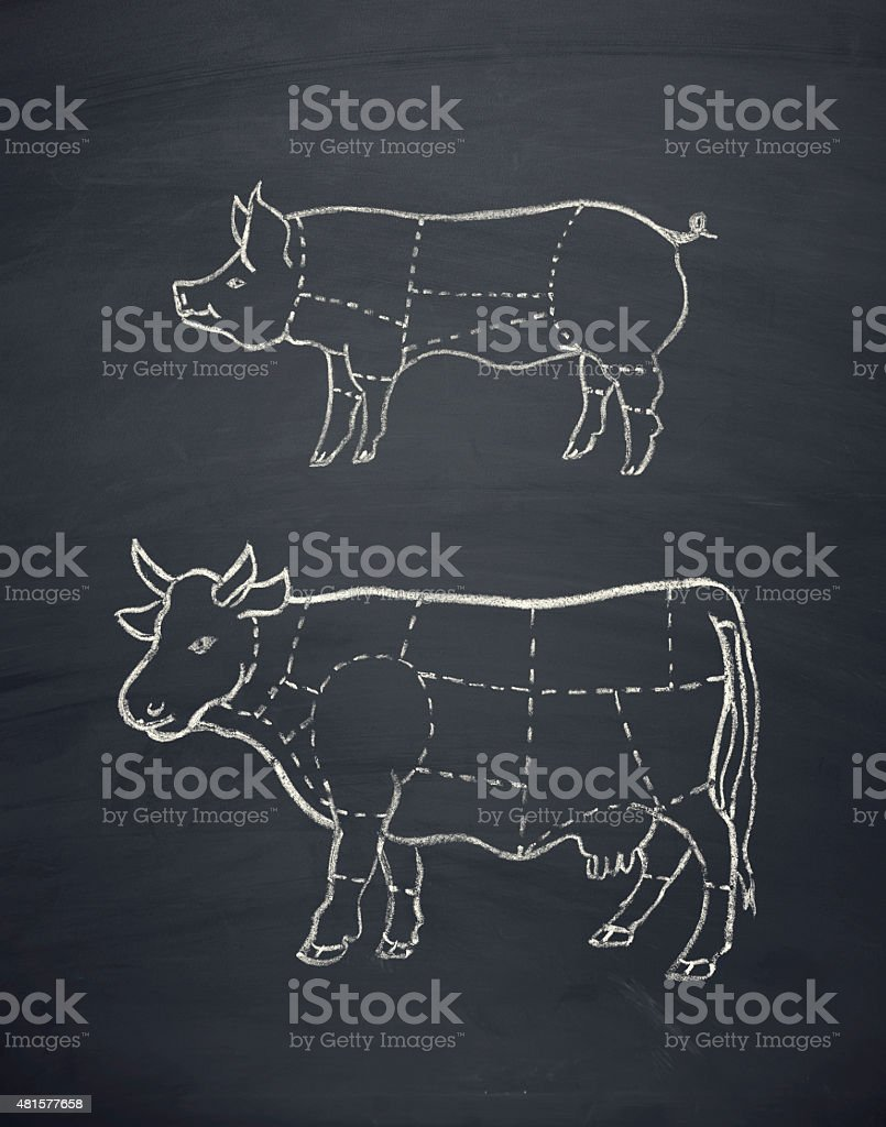 meat diagram of a cow and a pig stock photo