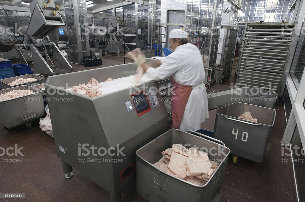 Meat grinder  production machine in the food factory. royalty-free stock photo