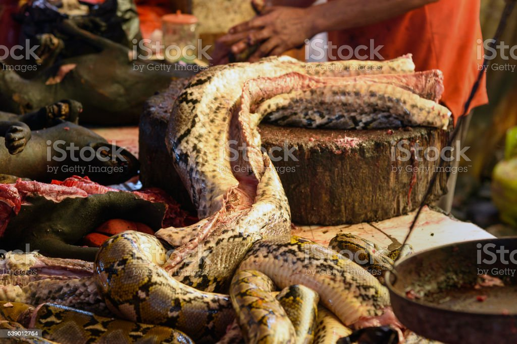 Meat of snake on Tomohon Traditional Market stock photo