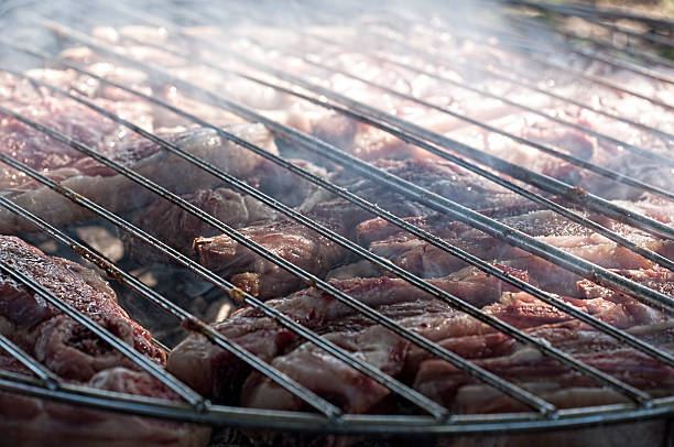 meat on grill stock photo