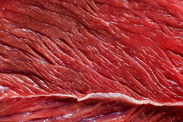 a carne - meat texture imagens e fotografias de stock