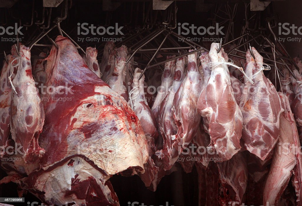Meat stock photo