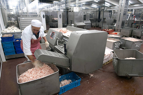 Meat production machine in the food factory. Meat grinder. Meat production machine in the food factory. Meat grinder. People, human workers. distribution center stock pictures, royalty-free photos & images