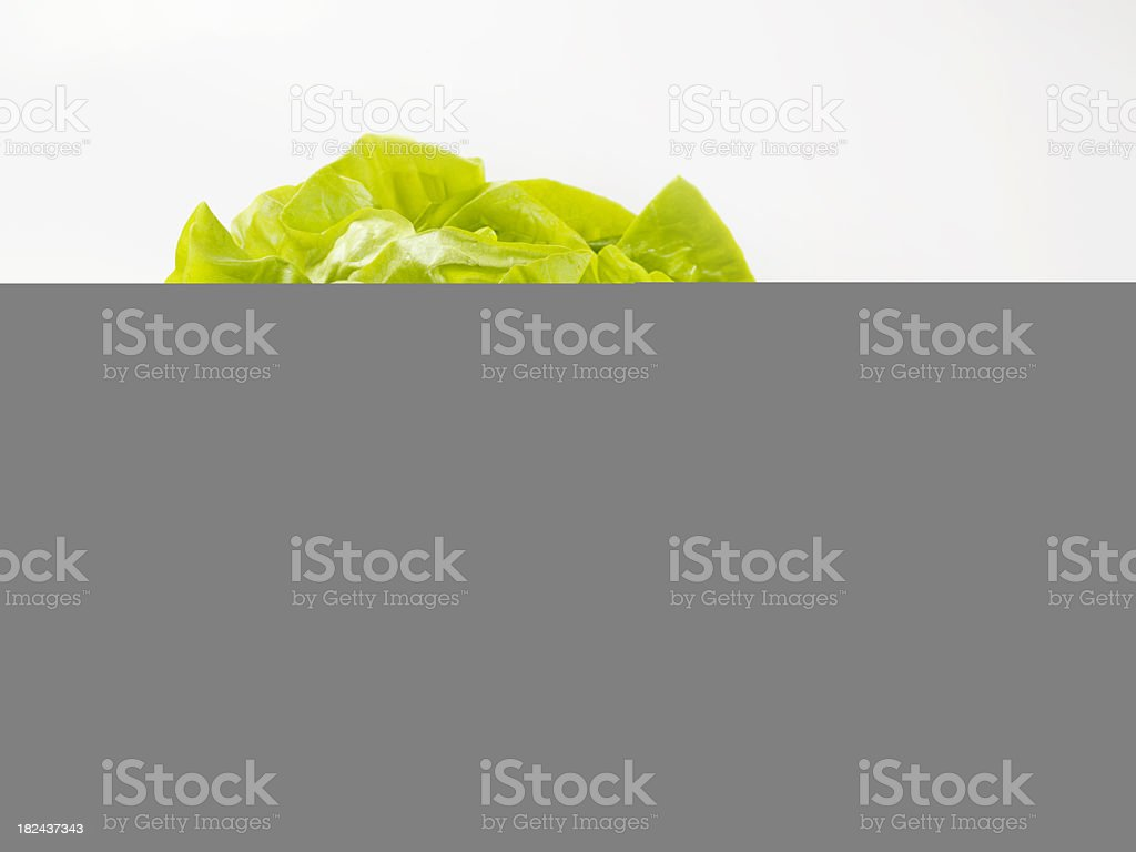 Meat Skewers on the BBQ royalty-free stock photo