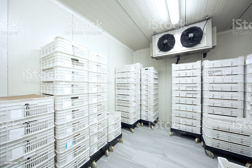 Meat Storage at -30 Celcius stock photo