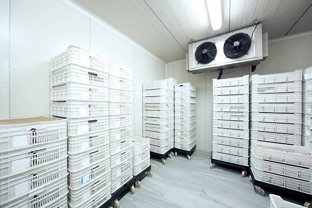 Carne de almacenamiento a -30 Celcius - foto de stock