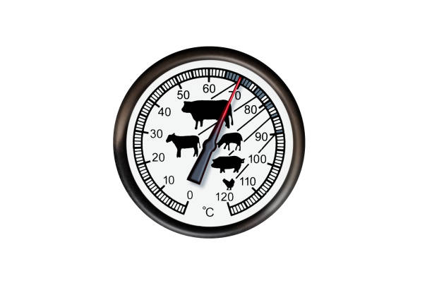 Meat thermometer isolated on a white background stock photo