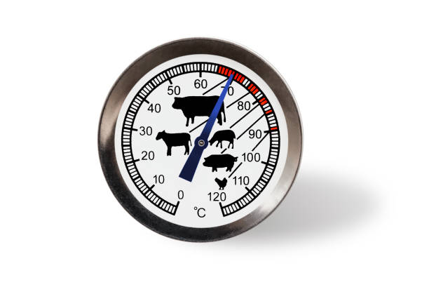 Meat thermometer isolated on a white background with shadow. stock photo