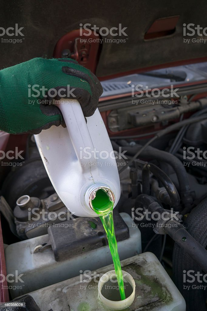 Mechanic Filling Vehicle With New Antifreeze royalty-free stock photo