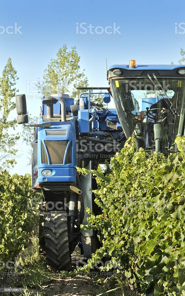 Mechanical harvester of grapes stock photo