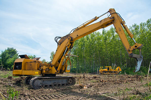 mechanical site preparation for forestry. - logging equipment stock photos and pictures