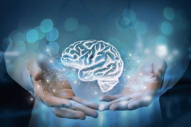 médico se muestra en las manos del cerebro. - brain fotografías e imágenes de stock