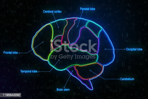 Medical brain research with anatomy of human brain lobes at abstract digital pixels background. 3D Rendering