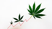 Marijuana leaves portraying a stock market price rise.