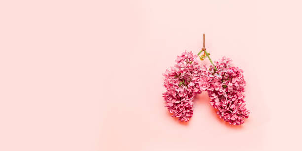 Medical concept of pink flowers in the form of a light pink with picture id1163542168?b=1&k=6&m=1163542168&s=612x612&w=0&h=masmn8ru9ixvznctcfbd tmnsbr56e9nxejgh82ik1o=