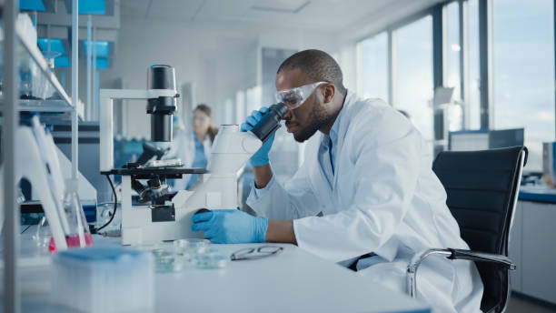 Medical Development Laboratory: Portrait of Black Male Scientist Looking Under Microscope, Analyzing Petri Dish Sample. Professionals Doing Research in Advanced Scientific Lab. Side View Shot stock photo