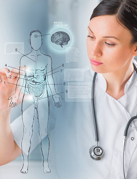 medical doctor working virtual interface examining human body - biomedical illustration stock photos and pictures