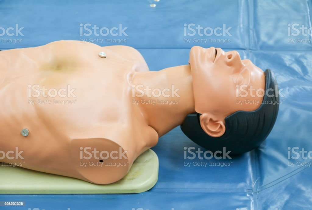 medical dummy on CPR, in emergency refresher training to assist of physician stock photo