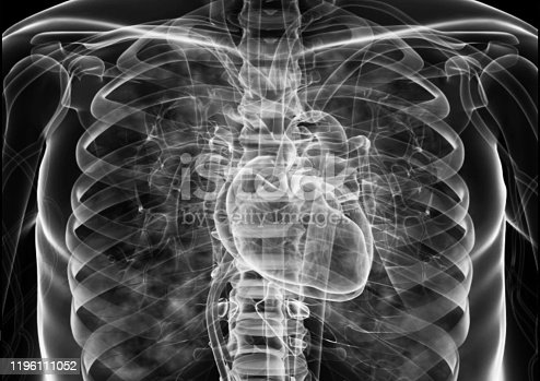 637851338 istock photo Medical flim chest x-ray body  heart and   both lung.concept MRI use diagnosis disease myocadium infraction (MI) and physiology lung diease. and point red on apex heart in flim. 1196111052