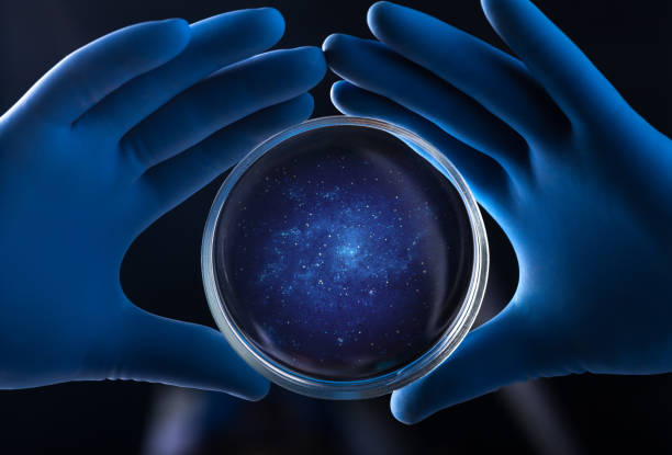 Medical hand holds petri dish Doctor hand holds petri dish with galaxy petri dish stock pictures, royalty-free photos & images