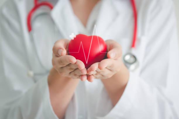 의료 심장 심장 개념 - 심장 전문의 뉴스 사진 이미지