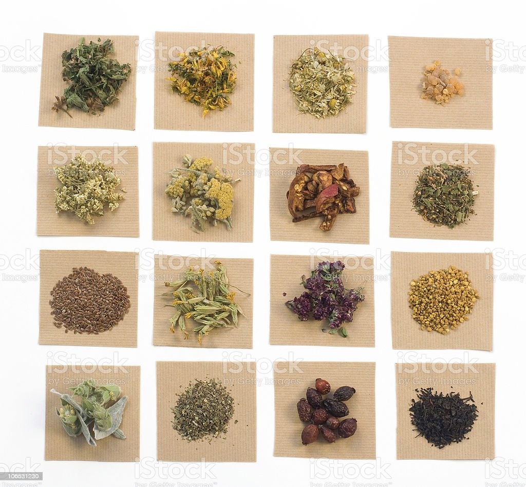 Medical Herbs royalty-free stock photo