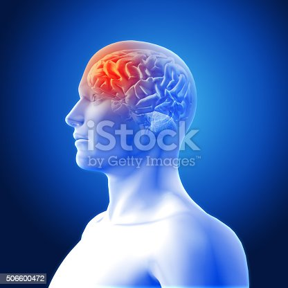 183306794istockphoto 3D medical image showing brain 506600472