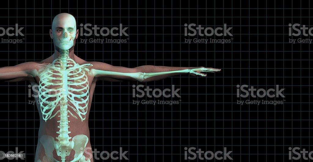 Medical Imaging royalty-free stock photo
