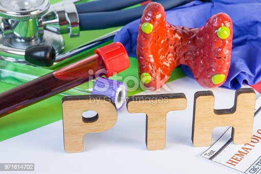 istock Medical laboratory abbreviation PTH or parathyroid hormone, which is secreted by  parathyroid gland and using his blood test may diagnose organ disease. Word PTH near model of thyroid, lab test tube 971614702