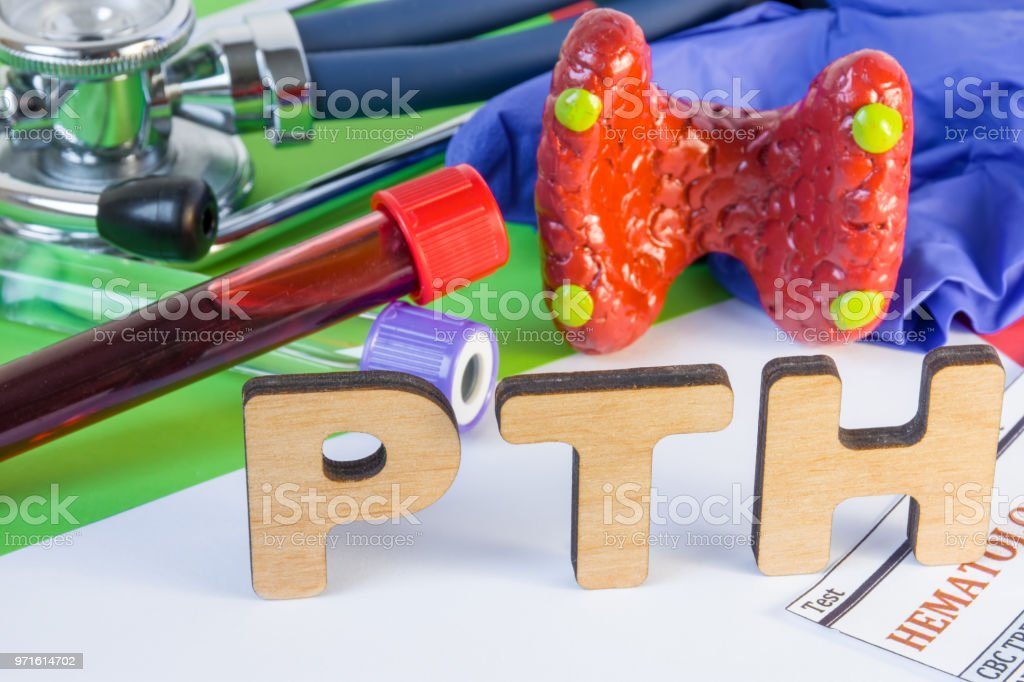Medical laboratory abbreviation PTH or parathyroid hormone, which is secreted by  parathyroid gland and using his blood test may diagnose organ disease. Word PTH near model of thyroid, lab test tube stock photo