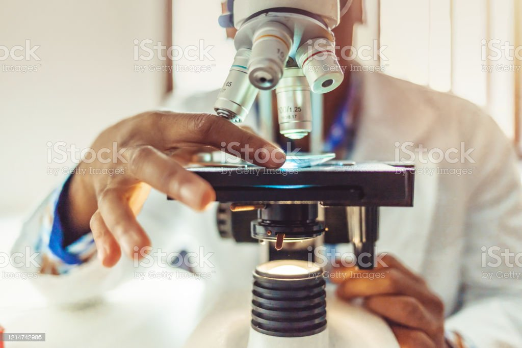 Medical laboratory, scientist hands using microscope for chemistry African-American men in a laboratory microscope with microscope slide in hand. African-American Ethnicity Stock Photo