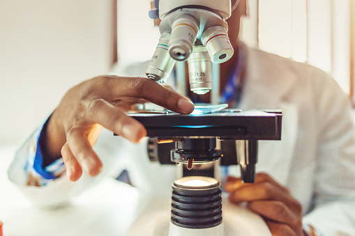 Medical laboratory, scientist hands using microscope for chemistry