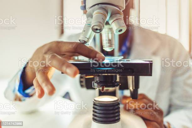 Medical Laboratory Scientist Hands Using Microscope For Chemistry Stock Photo - Download Image Now