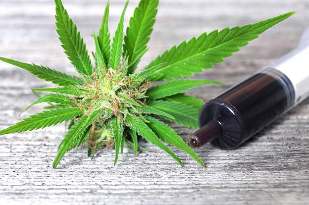 Medical marijuana and hash oil stock photo
