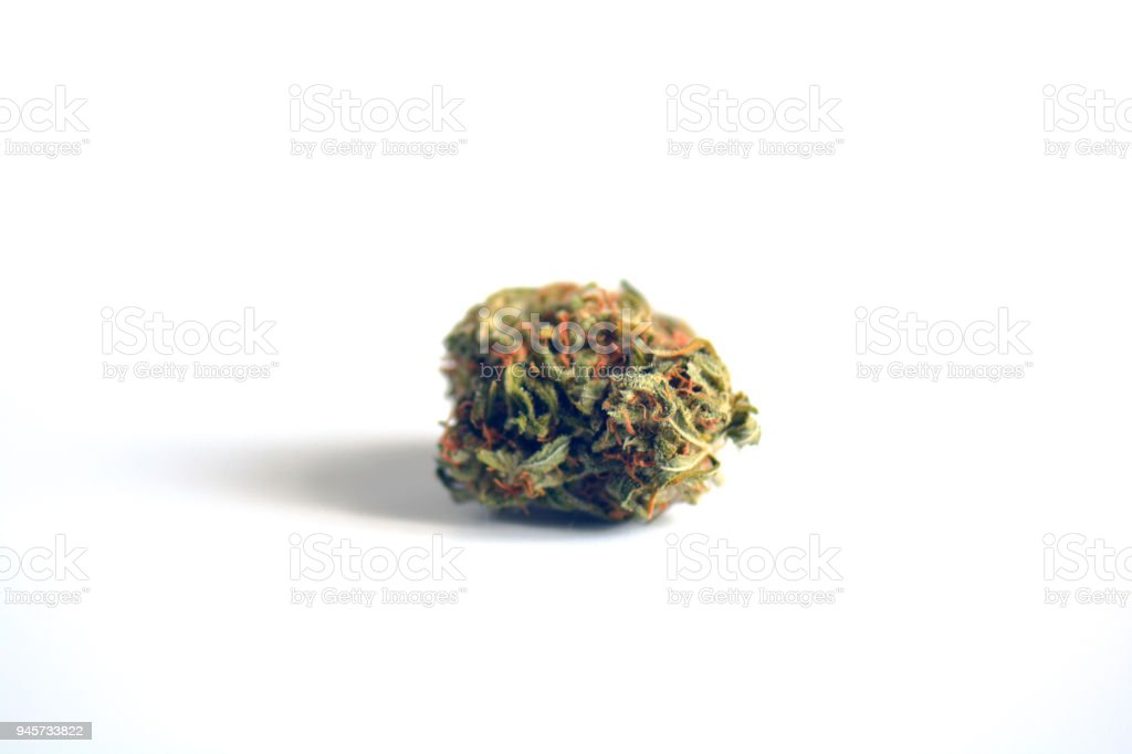 Medical marijuana bud isolated on white background. Therapeutic and medicinal cannabis weed stock photo