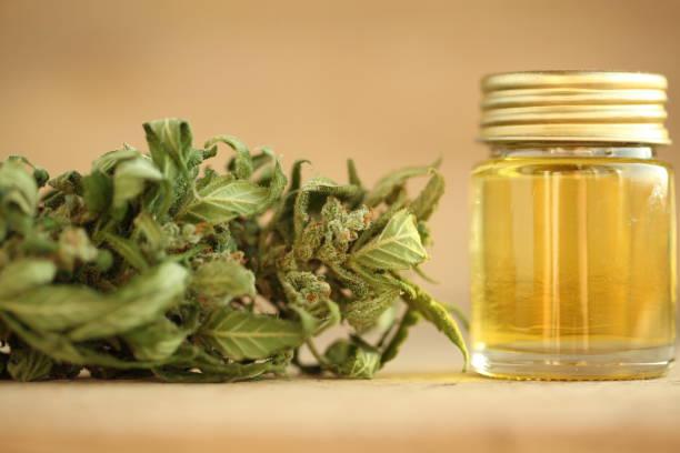 medical marijuana cannabis cbd  oilproduct oil cannabis oil cbd thc stock pictures, royalty-free photos & images