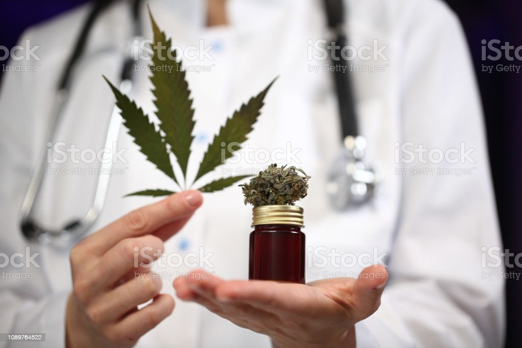 medical marijuana in the hand of a doctor. cannabis alternative medicine medical marijuana in the hand of a doctor. cannabis alternative medicine Addiction Stock Photo