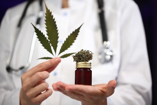 Medical Marijuana In The Hand Of A Doctor Cannabis Alternative Medicine Stock Photo - Download Image Now