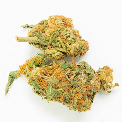 istock Medical Marijuana 174979151