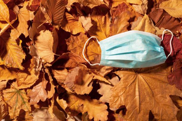 máscara médica. hojas secas de otoño. vista superior de la foto. - halloween covid fotografías e imágenes de stock