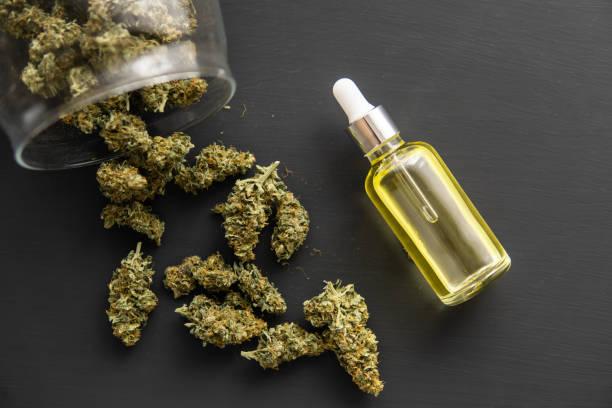 Cтоковое фото CBD medical OIL, Cannabis oil in pipette, cannabis marijuana concept, close up,
