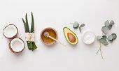 Medical plants used in alternative cosmetology: aloe, honey, coconut and avocado, white background, panorama