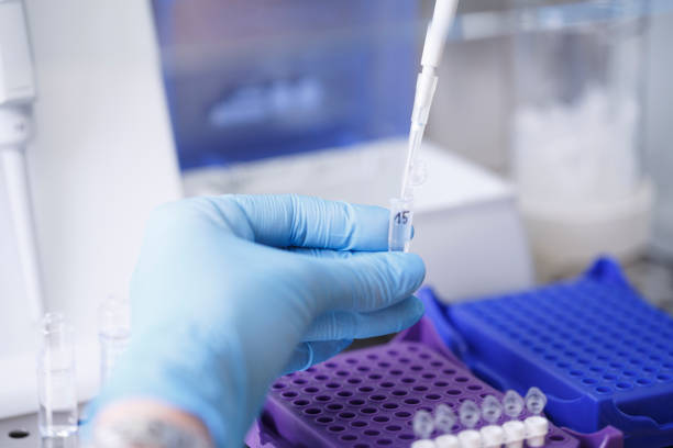 Medical research at the lab. Scientist in laboratory working with medical samples  using modern equipment. Laboratory Medical Equipment Medical devices for analyzes. Blood tested for Coronavirus (COVID-19) virus. stock photo