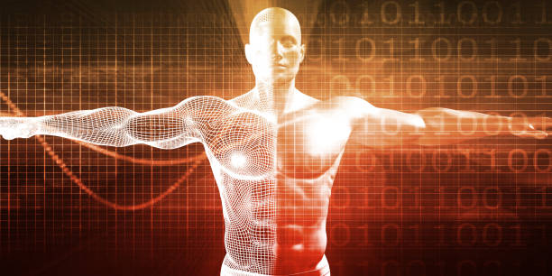 Medical Research Medical Research on the Human Body as Concept physiology stock pictures, royalty-free photos & images