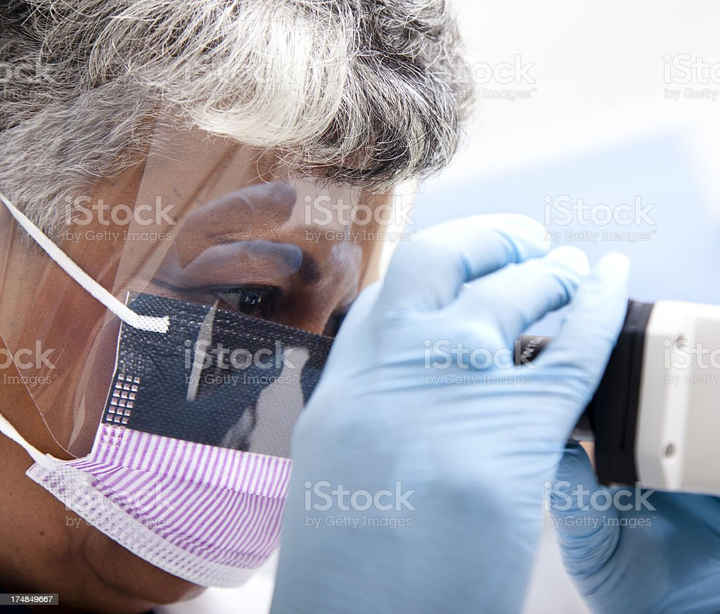 Medical Research: Science laboratory technician, scientist looks through microscope royalty-free stock photo