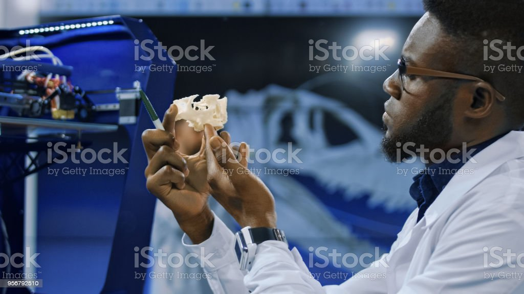 Medical researcher watching 3-D printed model stock photo