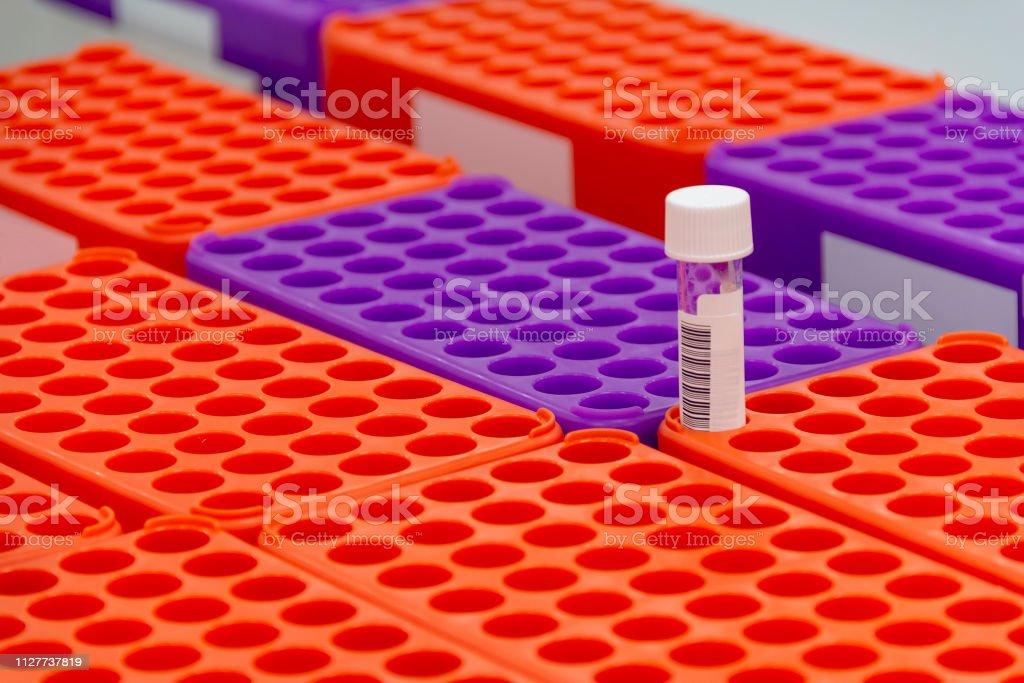 estantes de muestra médica - Foto de stock de Alemania libre de derechos
