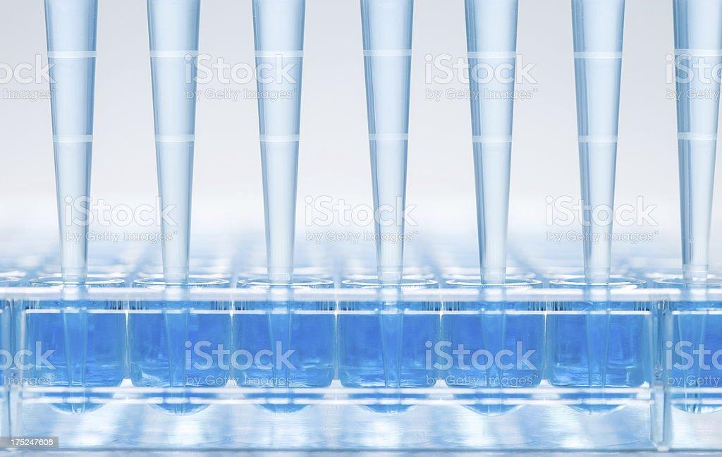 Medical samples analysis stock photo